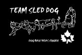 Team Sled T-shirt